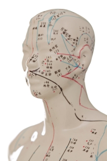Acupuncture Head