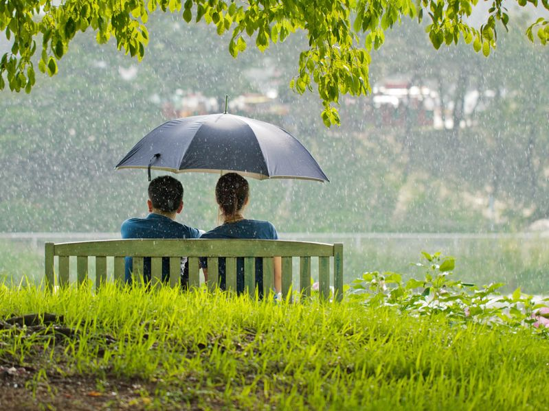 15048146 - a couple on a bench under umbrella